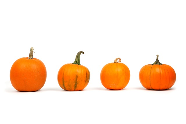 autumn-decoration-fall-food-fresh-freshness