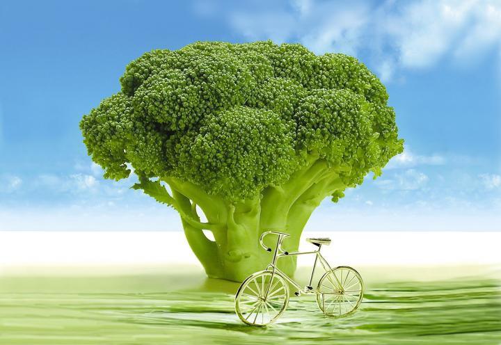 broccoli-694304_1280